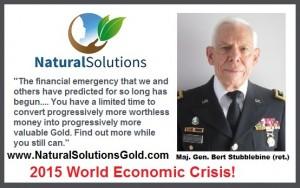 EconCrisi.GenBert