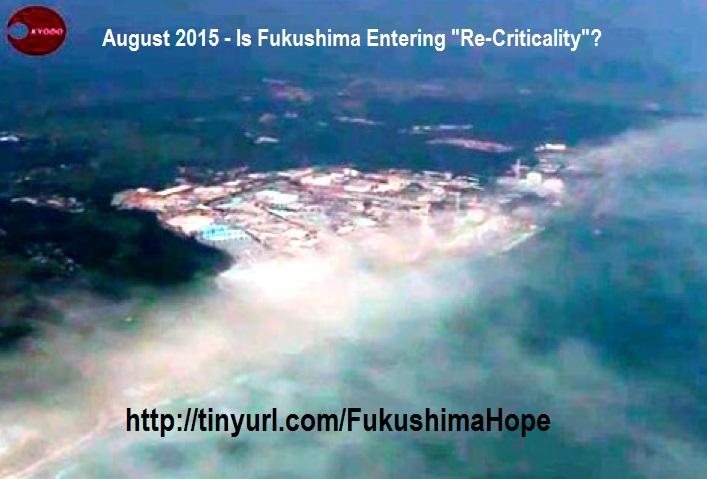 Fukushima.Re-criticality