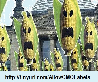 GMO.Label.Allow.banner