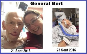 generalbert-2-images