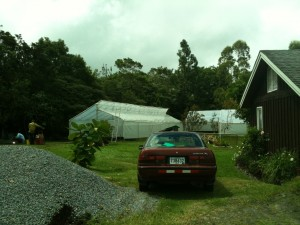 The New Greenhouses