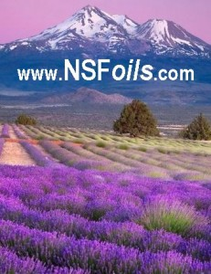 NSFoils-link