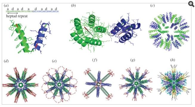 self-assembly-nanobots