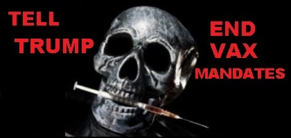 skull.needle.trump.plain